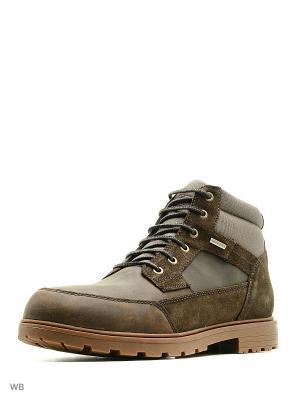 Ботинки GEOX. Цвет: коричневый, серо-коричневый
