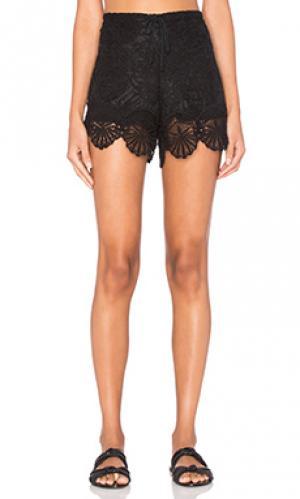 Шорты seashell lace Nightcap. Цвет: черный