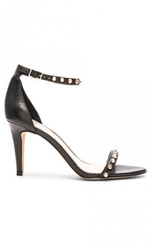 Обувь на каблуке cassandy Vince Camuto. Цвет: черный