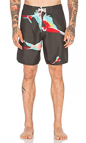 Плавательные шорты parrot Ambsn. Цвет: уголь