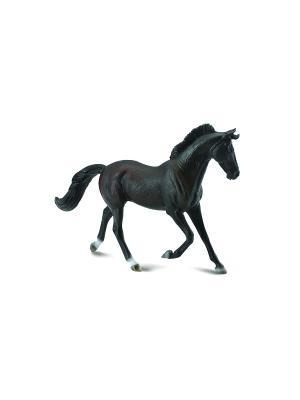 Чистокровнаякобыла черная  XL Collecta. Цвет: черный
