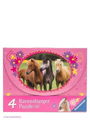 Пазл 4-в-1 Красивые лошади Ravensburger. Цвет: розовый, желтый, фиолетовый