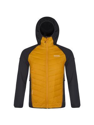 Куртка Andreson II Hybrd REGATTA. Цвет: светло-желтый