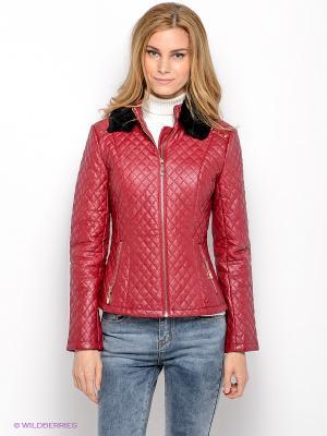 Куртка SAVAGE. Цвет: малиновый