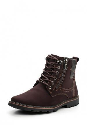 Ботинки Zenden Collection. Цвет: коричневый