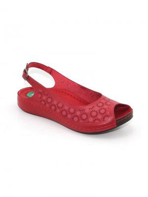 Босоножки Best Walk. Цвет: красный