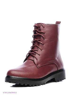 Ботинки Dino Ricci. Цвет: бордовый