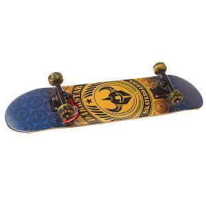 Скейтборд в сборе детский  S6 Revolt Youth Mid Orange 29.25 x 7.25 (18.4 см) Darkstar. Цвет: голубой,желтый