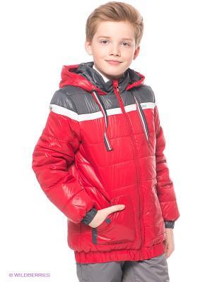 Куртка S`Cool. Цвет: красный, серый