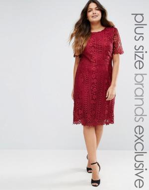 Truly You Цельнокройное платье с кружевным верхним слоем Premium. Цвет: красный