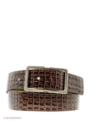 Ремень SERGIO TACCHINI. Цвет: коричневый