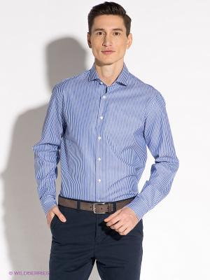 Рубашка Tommy Hilfiger. Цвет: синий, белый