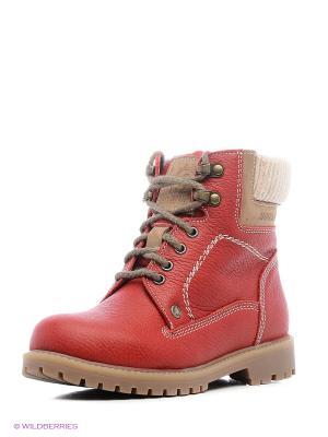 Ботинки Зебра. Цвет: красный