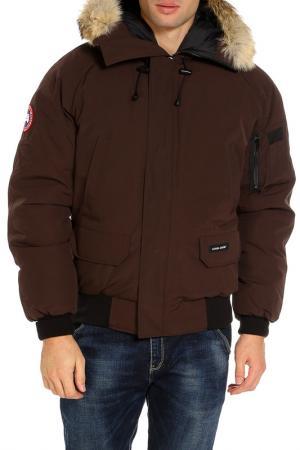 Куртка Canada Goose. Цвет: коричневый