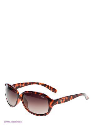 Солнцезащитные очки Legna. Цвет: коричневый