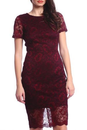 DRESS Moda di Chiara. Цвет: burgundy