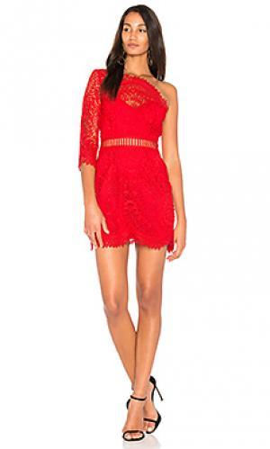 Платье с одним плечом pippa SAYLOR. Цвет: красный