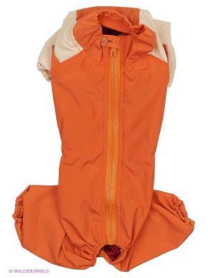 Комбинезон холодный на шелке (Мальтийская болонка) ТУЗИК. Цвет: оранжевый