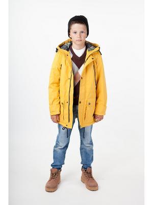 Куртка Добрыня Батик. Цвет: горчичный