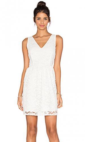 Кружевное платье kerry BB Dakota. Цвет: белый