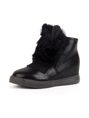 Ботинки SUMMERGIRL. Цвет: черный