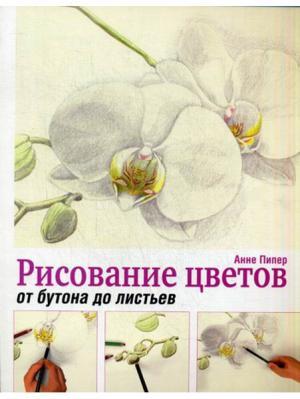 Рисование цветов от бутона до листьев Попурри. Цвет: белый