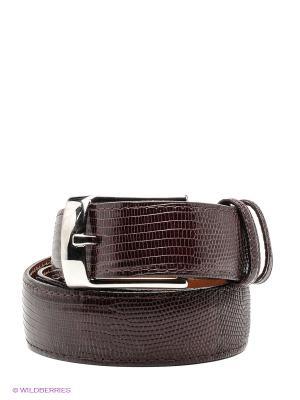 Pемень Pan American leather. Цвет: темно-бордовый