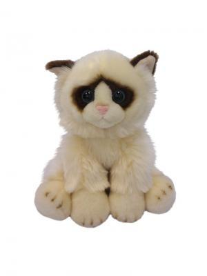 Мягкая Игрушка Котик MAXITOYS. Цвет: темно-коричневый, белый