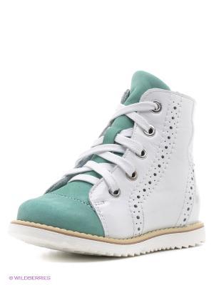 Ботинки San Marko. Цвет: белый, зеленый