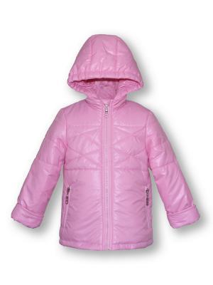 Куртка Артус. Цвет: розовый