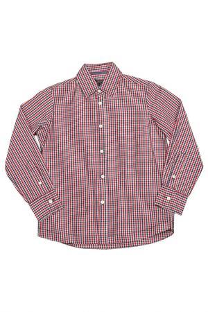 Рубашка Silvian Heach Kids. Цвет: розовый