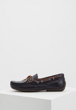 Мокасины Polo Ralph Lauren. Цвет: синий