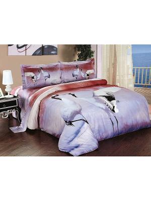 Комплект постельного белья Soft Line. Цвет: бордовый, сиреневый