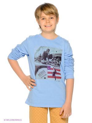 Лонгслив American Outfitters. Цвет: голубой, бордовый