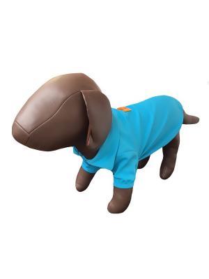 Жилет для животных Pet's Fashion. Цвет: голубой