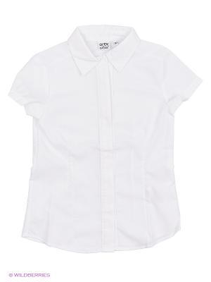Блузка Orby. Цвет: белый