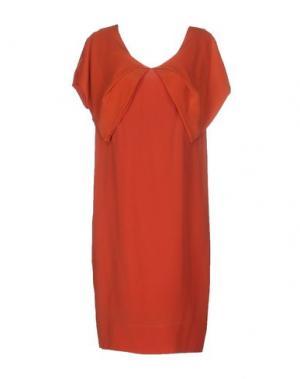 Платье до колена AQUILANO-RIMONDI. Цвет: оранжевый