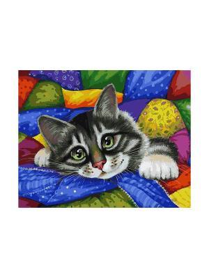 Живопись на холсте.Размер 40х50 см. Котик в лоскутках Белоснежка. Цвет: белый, синий, зеленый, серый, бордовый, фиолетовый, красный, желтый