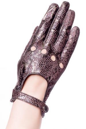 Перчатки Baggini. Цвет: коричневый, песочный