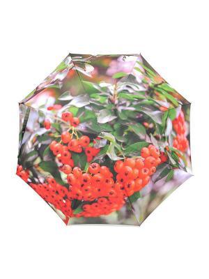 Зонт Stilla s.r.l.. Цвет: зеленый, серый