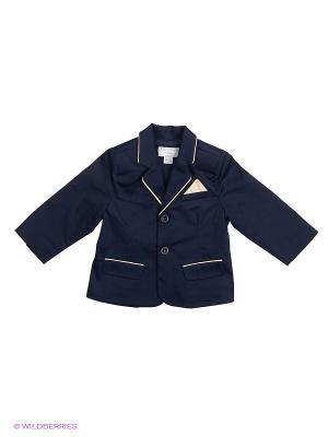 Пиджак CHICCO. Цвет: темно-синий
