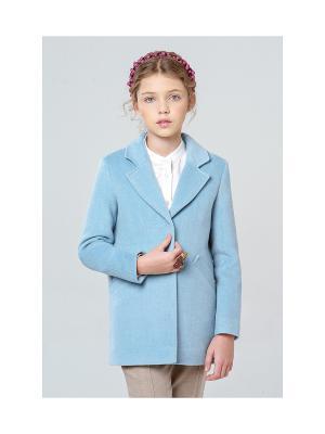 Укороченное пальто MORU. Цвет: голубой