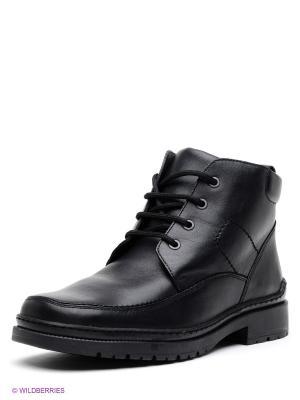 Ботинки Ralf Ringer. Цвет: бронзовый, серый