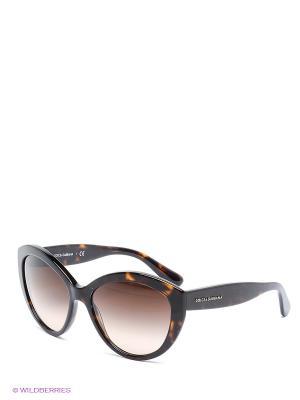 Очки солнцезащитные DOLCE & GABBANA. Цвет: коричневый, черный