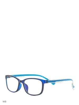 Компьютерные очки Vittorio Richi. Цвет: синий, голубой
