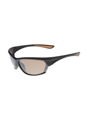 Солнцезащитные очки Gusachi. Цвет: черный, коричневый