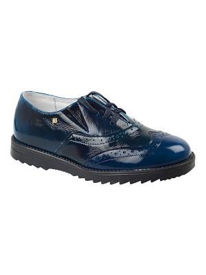 Туфли Тотто. Цвет: синий