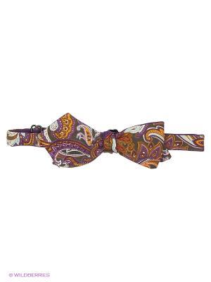 Бабочка Magnetiq. Цвет: фиолетовый