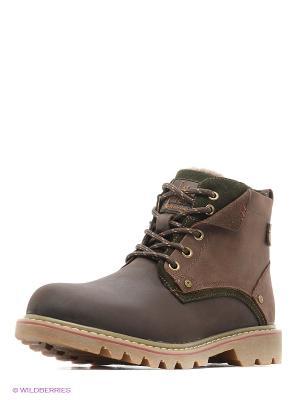 Ботинки Nexpero. Цвет: коричневый