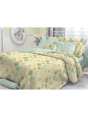 Комплект постельного белья семейный, VEROSSA,  наволочки 70*70см и 50*70см, Faliant Verossa. Цвет: зеленый, темно-бежевый, терракотовый
